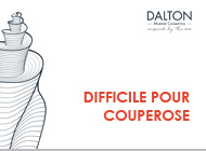 REDNESS CONTROL -  COUPEROSE