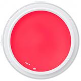 Farbgel Pinata   /5g