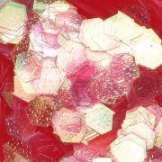 Hexagonal Design rot